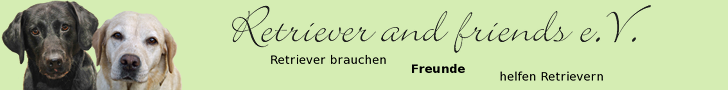 banner_728x90_D5EDB3_kissy-chaya-schriftzug-slogan